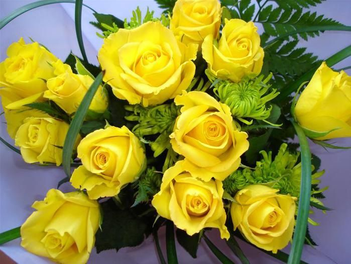 yellow_rose_23.jpg