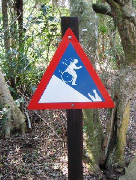 Bizarre Signs,