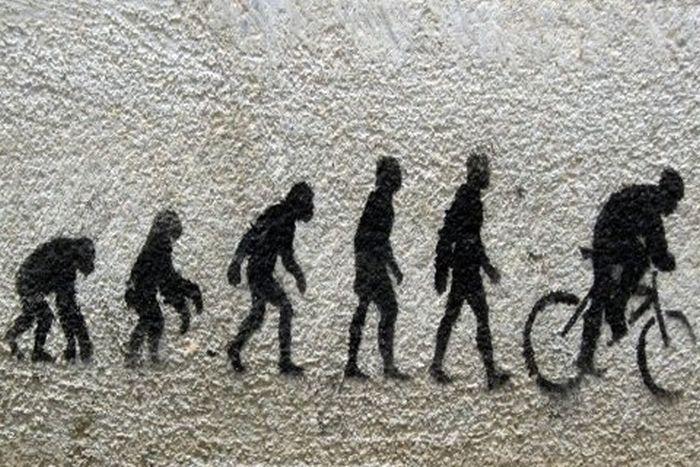 evolucion del hombre imagenes
