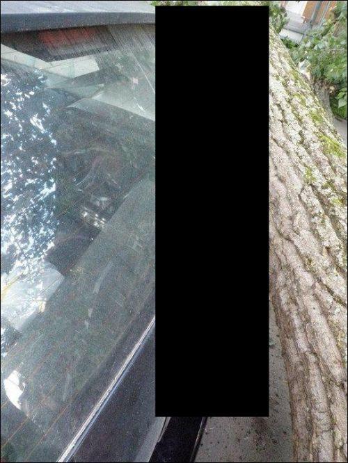 http://de.acidcow.com/pics/20120301/lucky_car_00.jpg
